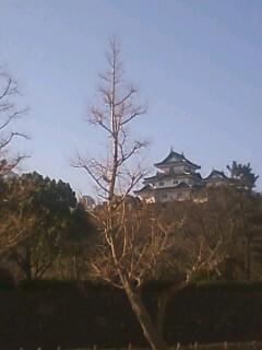 和歌山〜浜松〜平塚〜横浜_b0181435_1182898.jpg