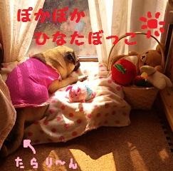 b0197865_2150840.jpg