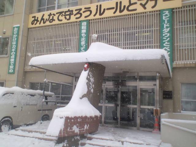 久しぶりの大雪。。。_b0127002_20263898.jpg