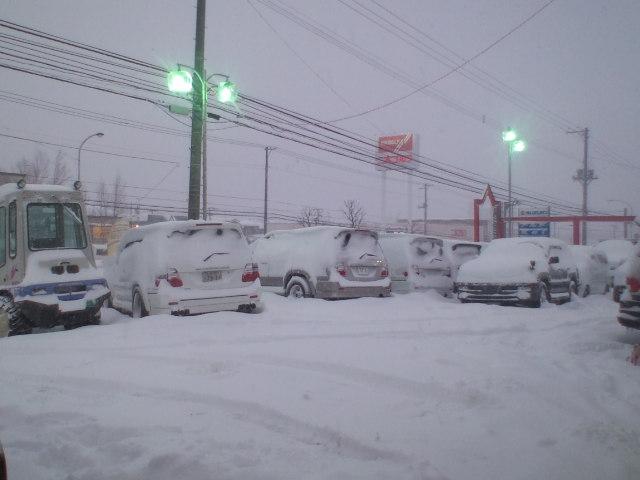 久しぶりの大雪。。。_b0127002_21190100.jpg