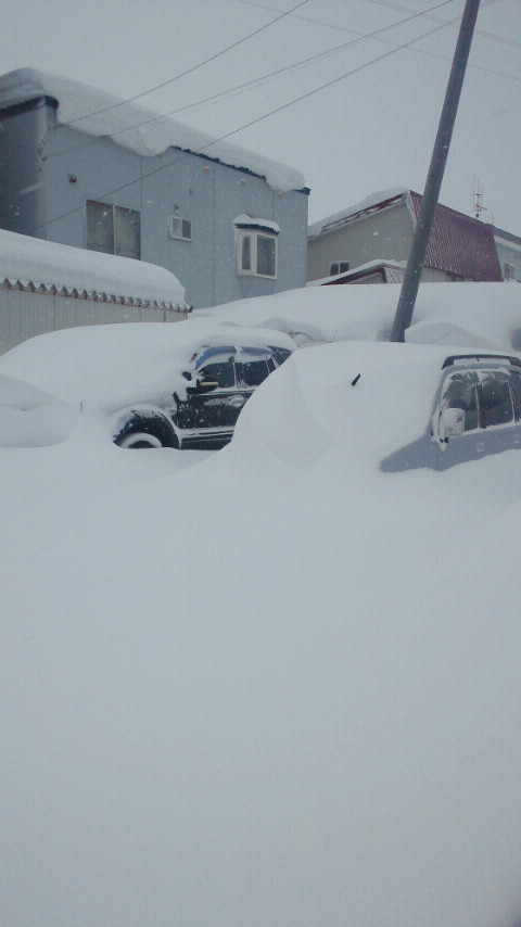 久しぶりの大雪。。。_b0127002_22435793.jpg