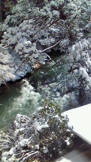 3月の雪_c0210517_1641194.jpg