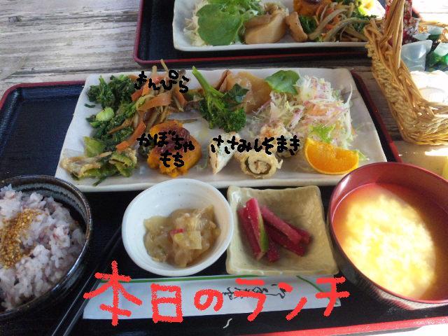ファーム・ヨコタとビバひな祭り★_d0187891_2302299.jpg