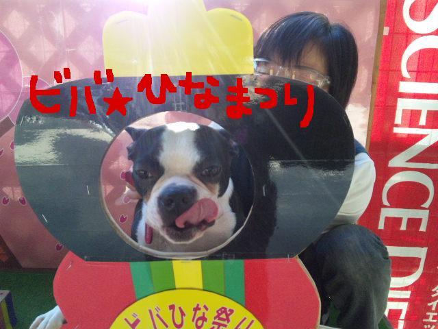 ファーム・ヨコタとビバひな祭り★_d0187891_232685.jpg