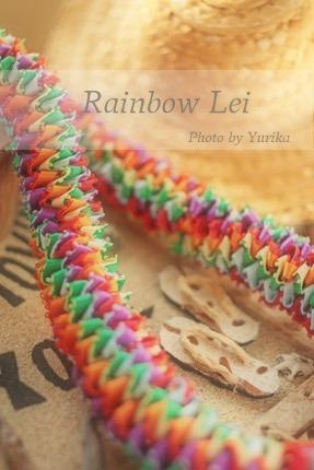 * Rainbow Lei *_c0083904_20113896.jpg