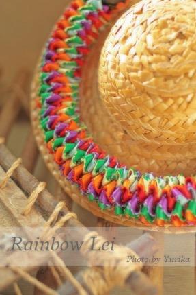 * Rainbow Lei *_c0083904_20535345.jpg