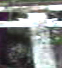 e0103408_14131945.jpg