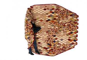 ブルレック兄弟デザインの絨毯_e0146210_21142859.jpg