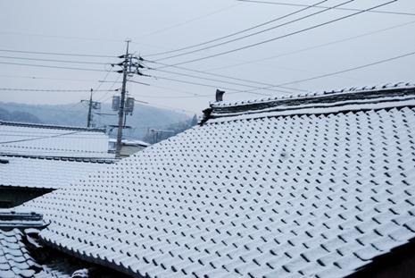 今日も雪_f0053218_7184317.jpg