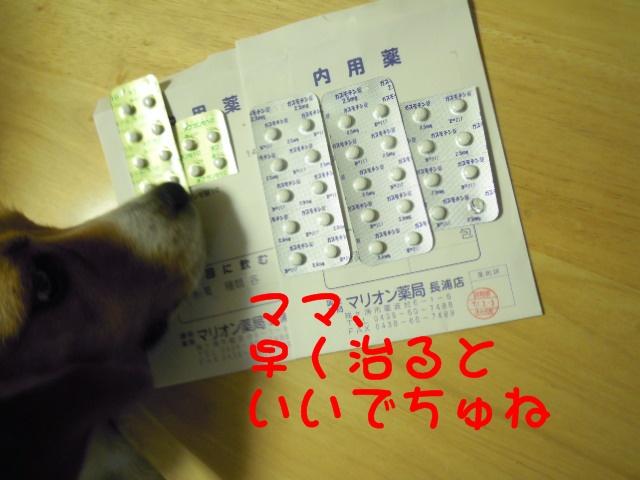 c0166622_811196.jpg