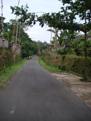 我が家までの道のり シドゥメン村市場~我が家まで Pasar Sidemen - Rumah _a0120328_15235830.jpg