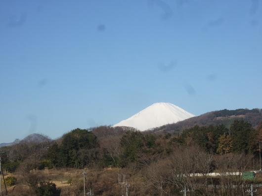 雪ですか?.....寒いはず。_b0137932_15454683.jpg