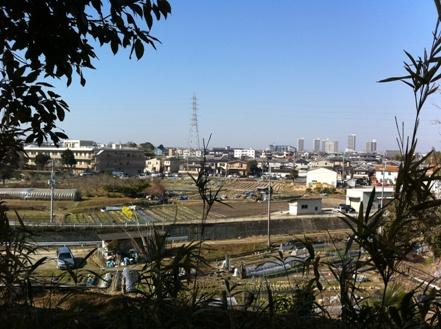 大阪の森の幼稚園「森のようちえん どんぐり」を訪れて_f0037258_15575199.jpg