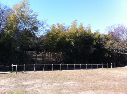 大阪の森の幼稚園「森のようちえん どんぐり」を訪れて_f0037258_17214957.jpg