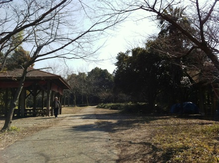 大阪の森の幼稚園「森のようちえん どんぐり」を訪れて_f0037258_17405047.jpg