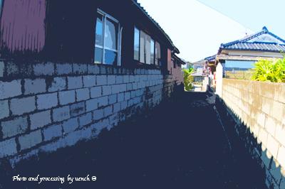 ニライカナイと故郷の風景_c0097291_1044051.jpg