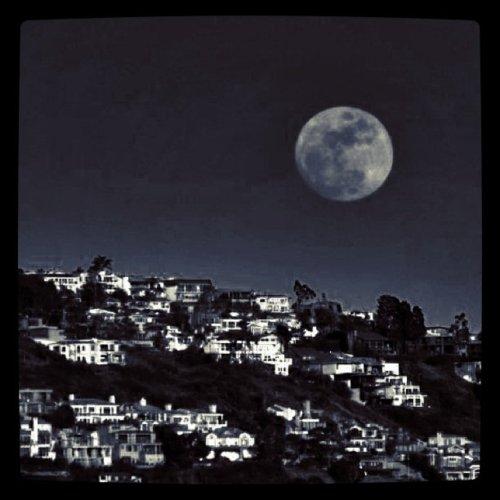 moon_c0127403_2355395.jpg