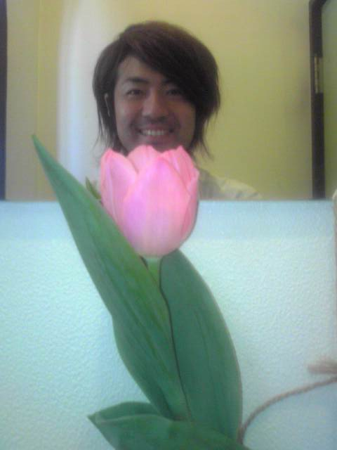 チューリップが咲きました!_c0183104_9393717.jpg