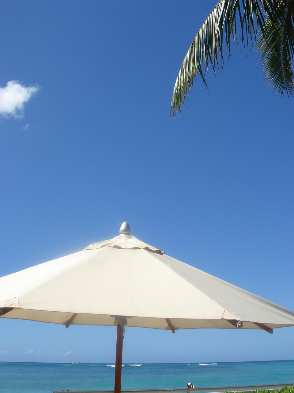 ハワイより帰還っ_f0215324_1426932.jpg