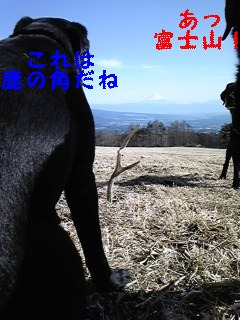 f0148927_22235271.jpg