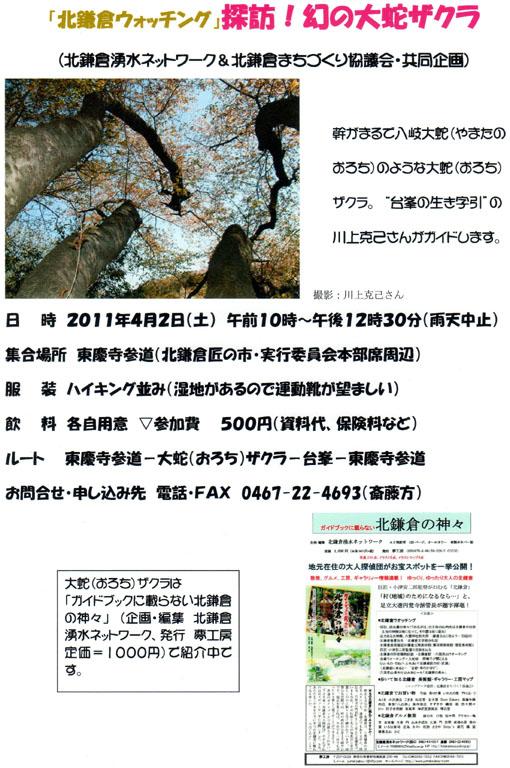 11・4・2「北鎌倉ウォッチング」―探訪!幻の大蛇ザクラ―_c0014967_942514.jpg