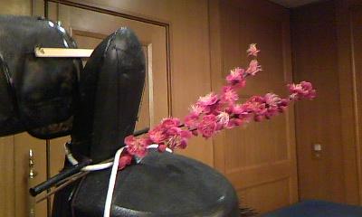 名古屋公演2011続_c0122270_62756.jpg