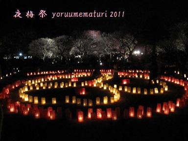 b0189408_2010543.jpg