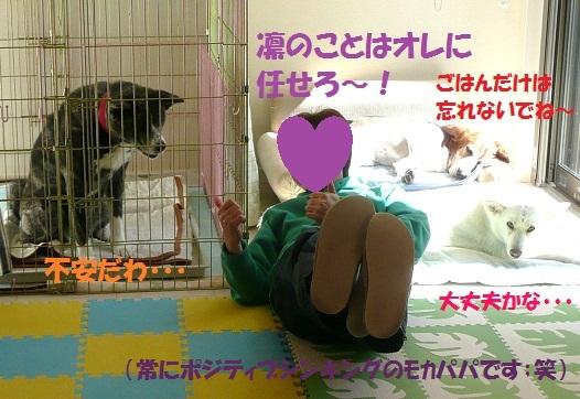 f0121712_124498.jpg