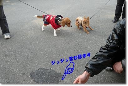 b0167519_91659.jpg