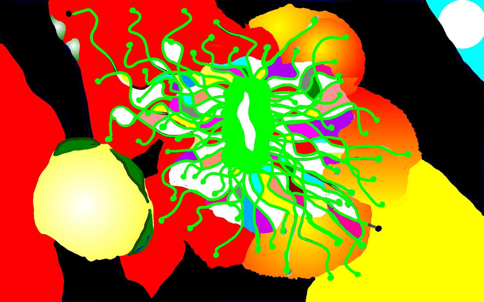 f0180726_13144088.jpg