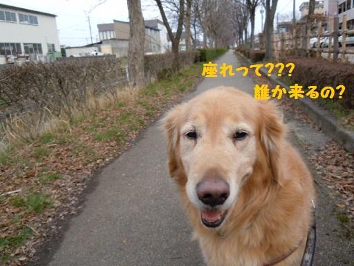 f0114128_19483260.jpg