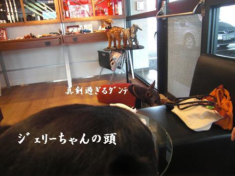 f0129731_1828378.jpg