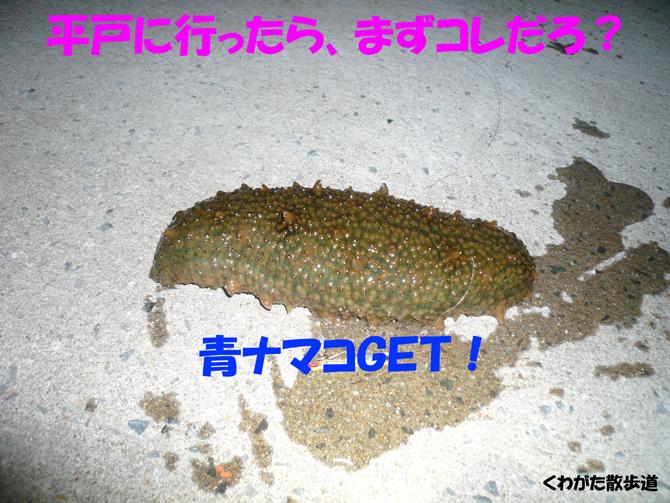 f0183484_17325685.jpg