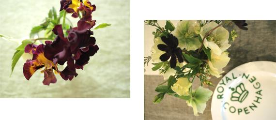 キッチンガーデンと、春の花_d0174704_23295349.jpg
