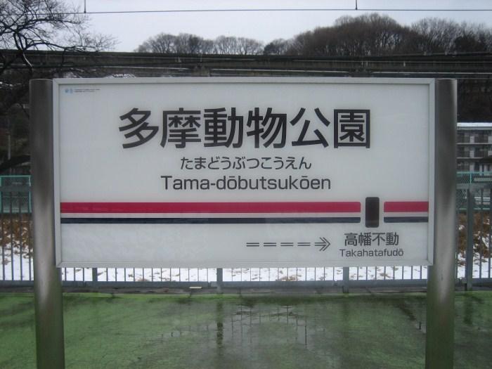 京王電鉄 ありがとう6000系_e0120143_23241729.jpg