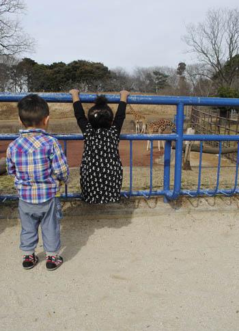 動物園!_a0028350_16185883.jpg