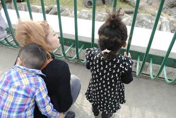 動物園!_a0028350_1627544.jpg