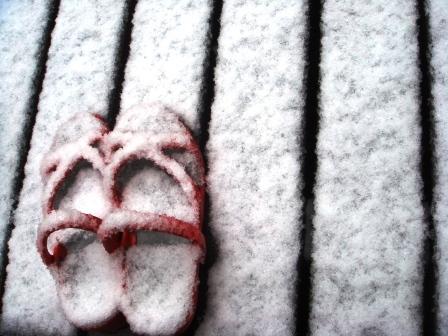 3月の雪_a0163160_1116661.jpg