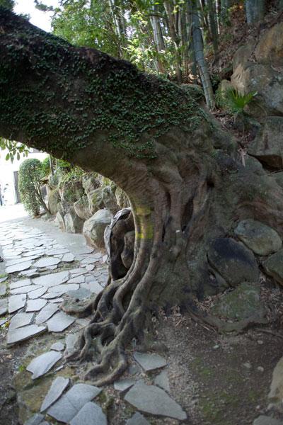 2011/03/07 ゾロ目散歩/熱海 その1_b0171364_1775845.jpg