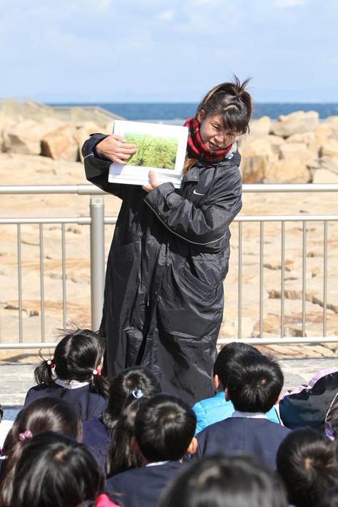 3/4 せんなん里海公園アマモ移植_e0201269_12445073.jpg
