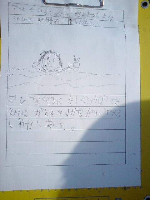 3/4 せんなん里海公園アマモ移植_e0201269_1343113.jpg