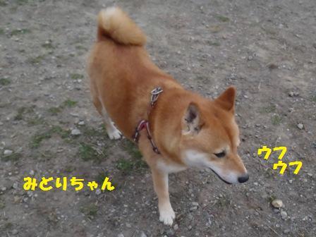 f0230380_1659243.jpg