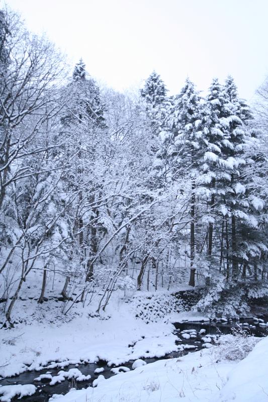 三月の雪景色_f0091207_0434099.jpg