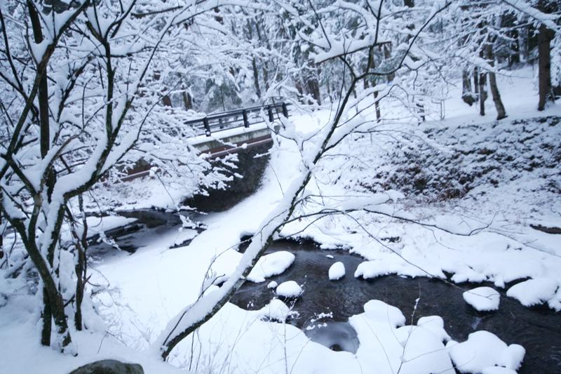 三月の雪景色_f0091207_0442256.jpg