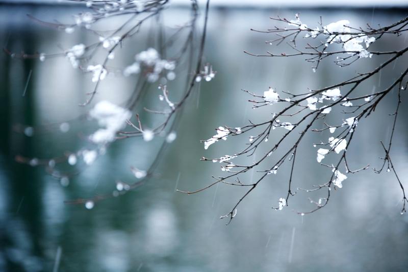雪融け_f0091207_20283025.jpg