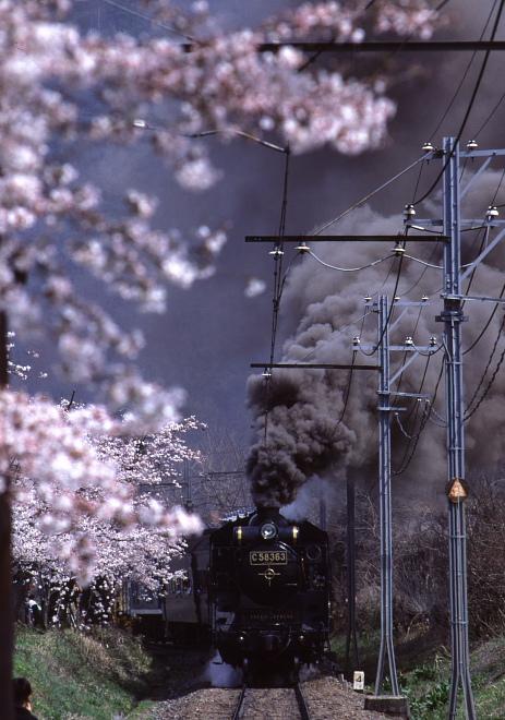 さくらと煙 - 1988春・秩父 -_b0190710_2334831.jpg