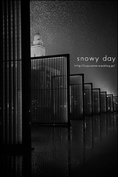 雪の日_f0100215_1111063.jpg