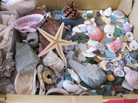 海からの贈り物_f0129726_22284719.jpg