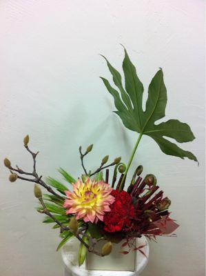 お祝いのお花たち_f0145839_055122.jpg
