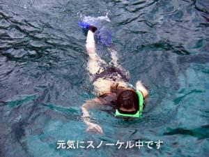 サンゴを病院に連れて行ってあげて♪_f0144385_21405984.jpg
